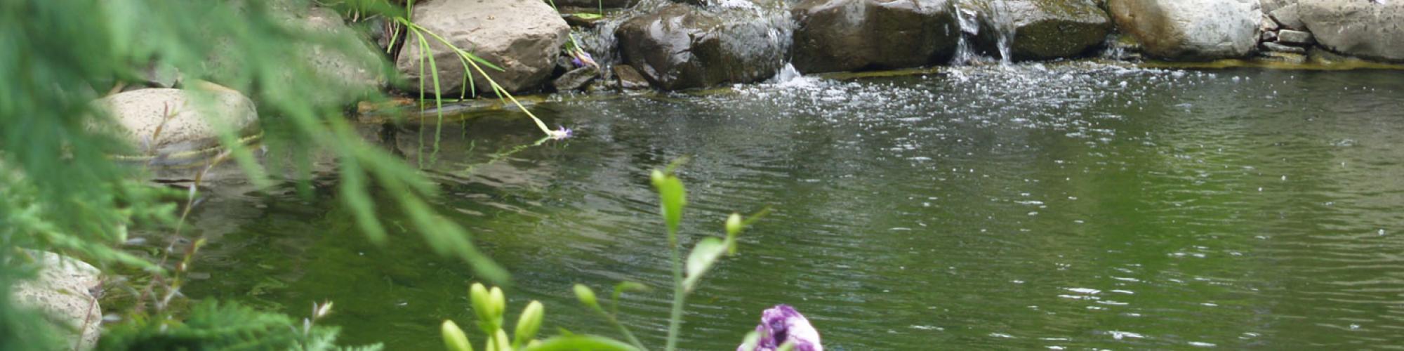 Laghetti e fontane da giardino girotti il mondo all 39 aperto for Laghetti ornamentali da giardino